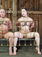 tied young bdsm