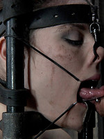 sucking young bdsm