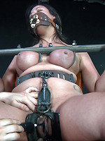 begging bdsm blowjob