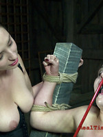 beg BDSM sex